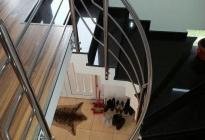 BI034-balustrada-inox-ateleir46-ro-pitesti